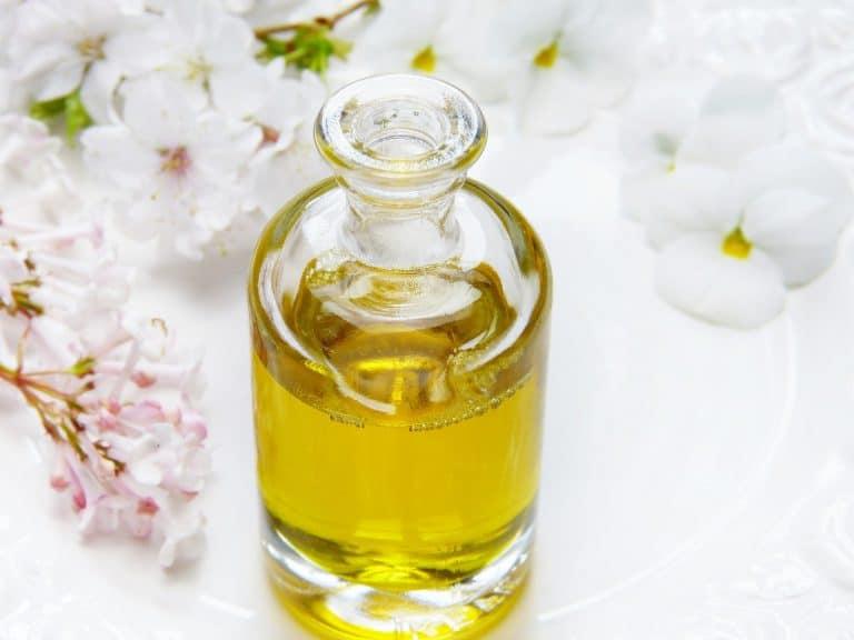 Olej z czarnuszki – jak działa, jakie ma właściwości i dla kogo jest wskazany?