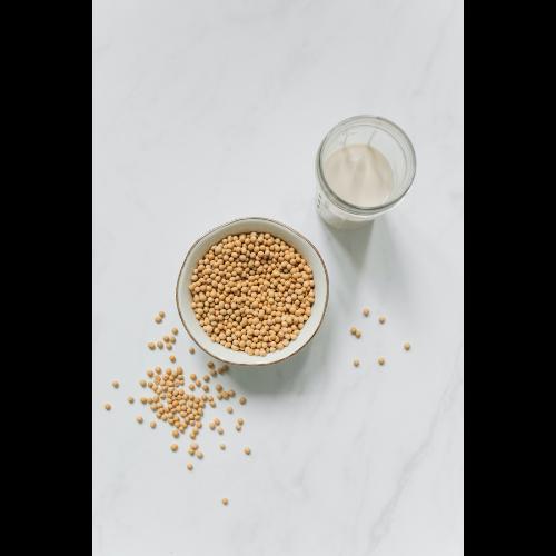 Jak zrobić mleko sojowe samodzielnie?